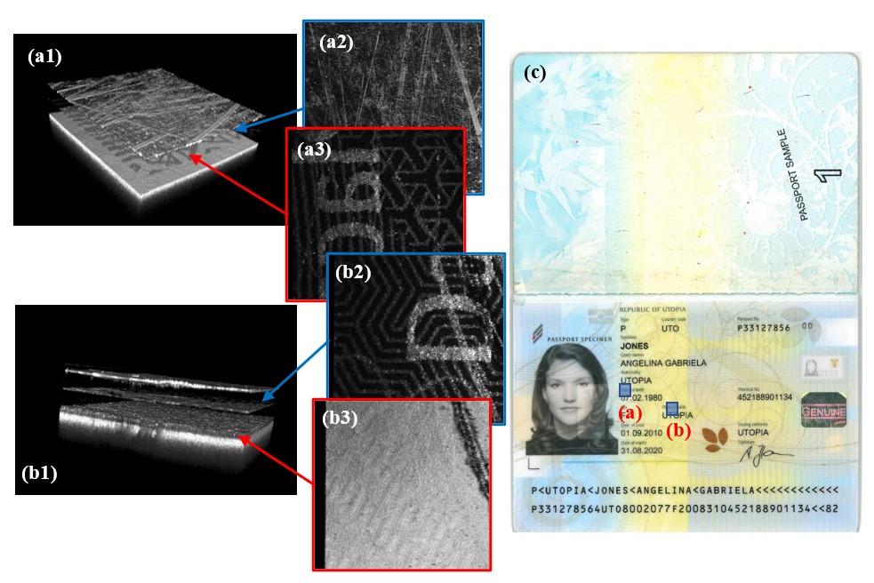 dissection of specimen passport