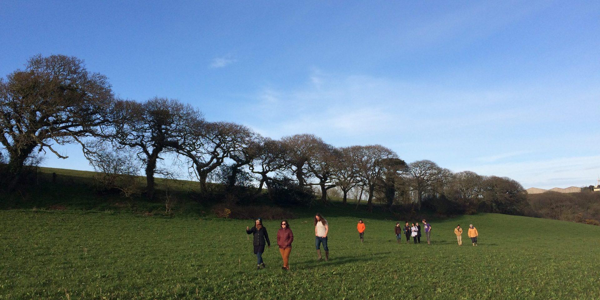 People walking through a field