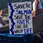 Save the Salmon placard