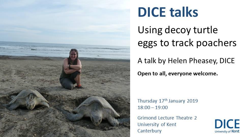 DICE talk: decoy turtle eggs