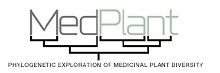 MedPlant Logo